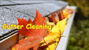 Clean-gutter-fall-a
