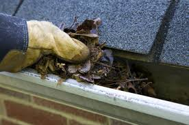 gutter-cleaning-2 pic