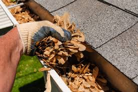 gutter-cleaning-4 pic