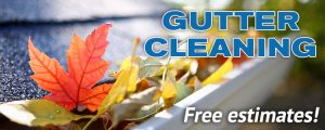 aaa-solutions-gutter-cleaning-services
