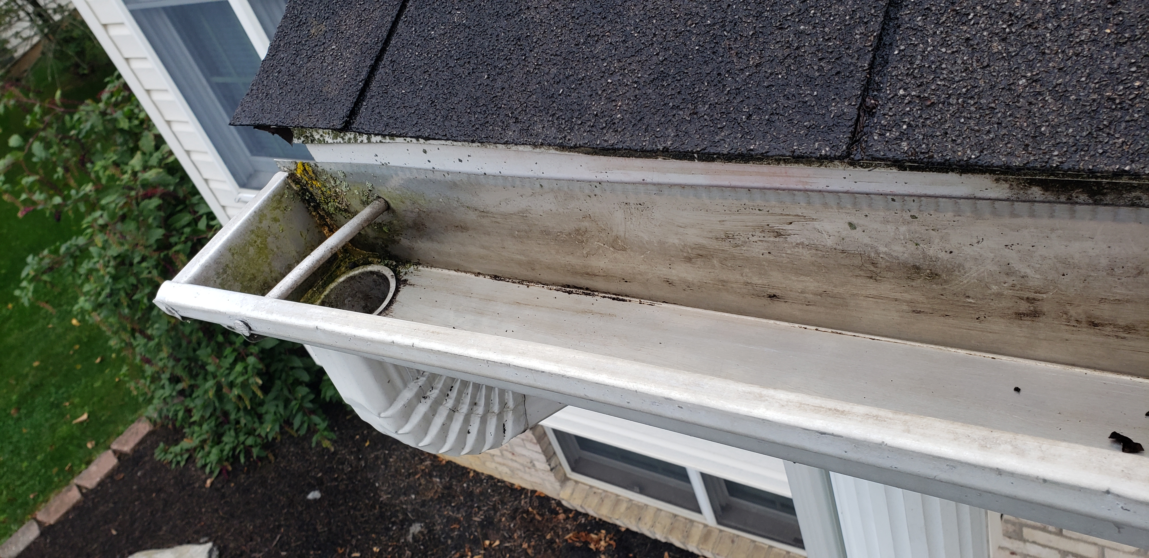 Gutter and downspout cleaned