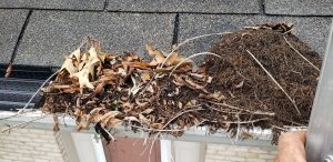 Clogged gutters can cause water damage